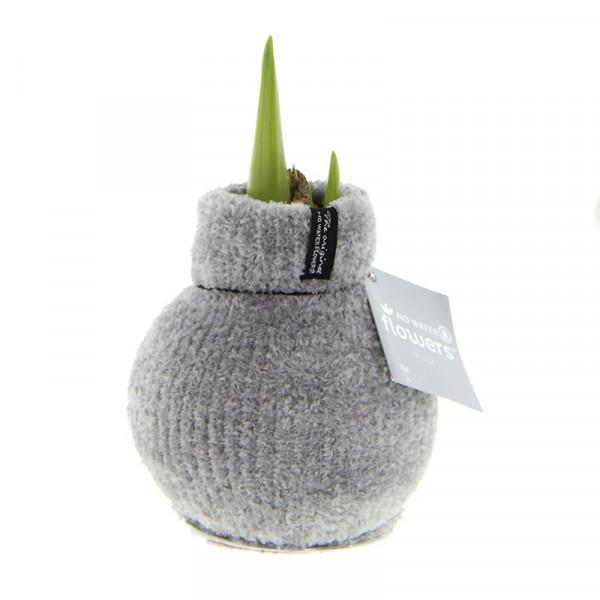 Wax Amaryllis Fashionz Cozy Fluffy Grau